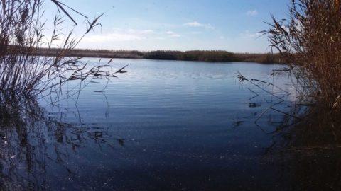 Iproma controlará la calidad del agua de la cuenca del Júcar