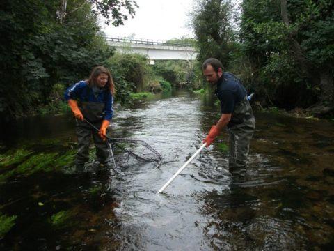 IPROMA en UTE con DENGA, efectuará el seguimiento de las masas de agua superficiales en la cuenca del Duero