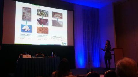 El proyecto REMEB presente en el Congreso Internacional Permea, referente en la investigación de tecnología de membranas