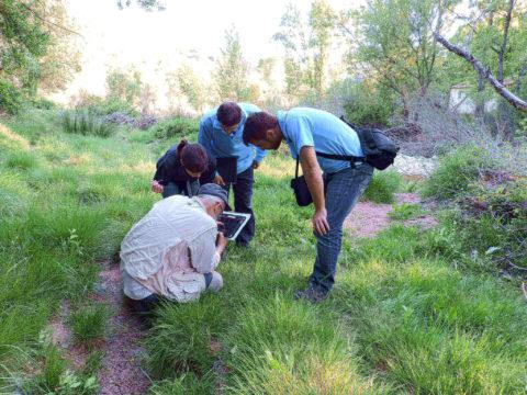 IPROMA afianza sus conocimientos en índices de calidad ecológicos